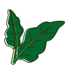Leaves plant natural foliage garden icon vector