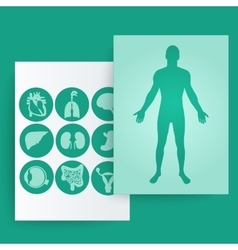 Template of medical banner vector