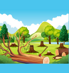 Forest scene with stump trees vector