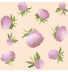 peony floral seamless pattern Pink cute vector image vector image