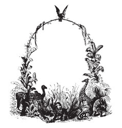 Wildlife frame have several different types of vector