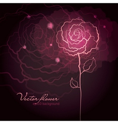 rose flower design vector image