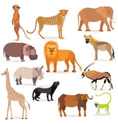 Big set with african animals vector