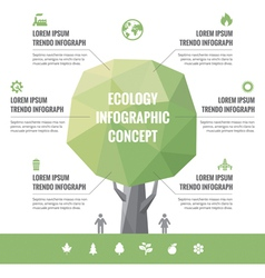 Infographic Business Concept of Ecology vector image vector image