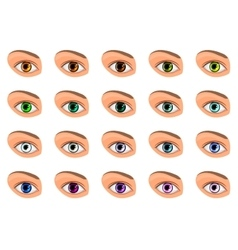 Colored contact lenses vector
