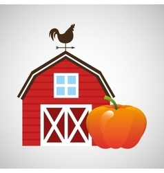 Farm and pumpkin icon vector