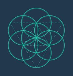 flower of life metatrons cube sacred geometric vector image
