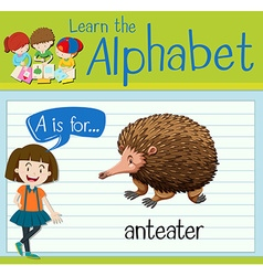Flashcard letter A is for anteater vector image vector image