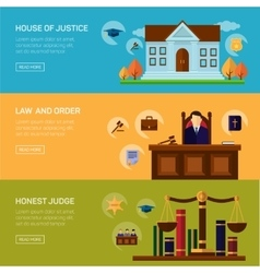 Legal services crime and punishment law vector image