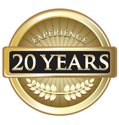 Twenty Years Experience Gold vector image vector image