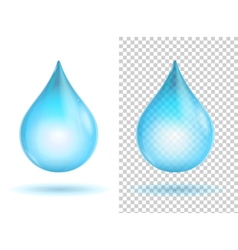 Water transparent drops vector