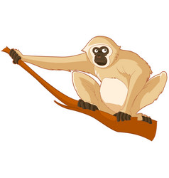 Cartoon smiling gibbon vector