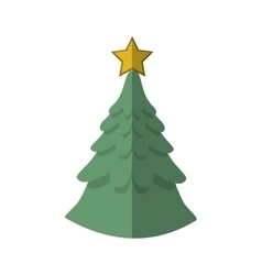 Isolated pine tree of Christmas season design vector image