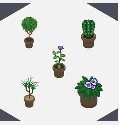 Isometric houseplant set of flowerpot flower vector