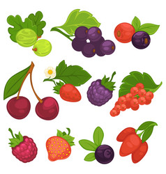 Berry fruits isolated flat icons for jam or vector
