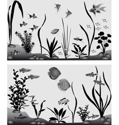 Freshwater aquarium vector image vector image