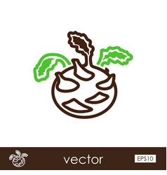 kohlrabi outline icon vegetable vector image vector image