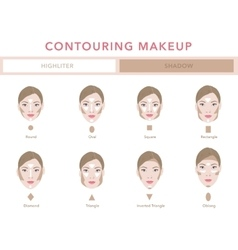 Type of faces contouring tutorial vector