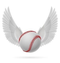 Flying baseball vector