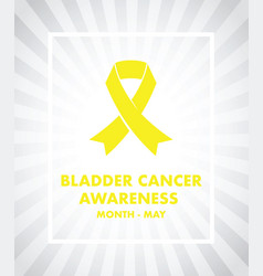 bladder cancer awareness vector image