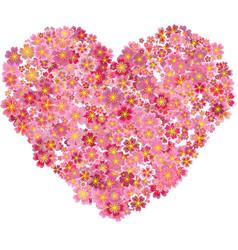 Heart shape pink sakura flowers splash vector