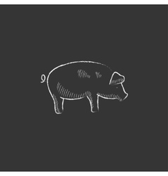 Pig drawn in chalk icon vector