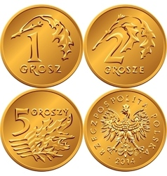 set Polish Money one two and five groszy coin vector image vector image
