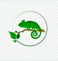 Concept with chameleon logo vector