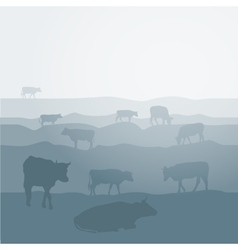 Cows graze in the field landscape sky grass vector