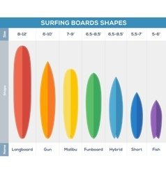 Surfing boards types infographic vector