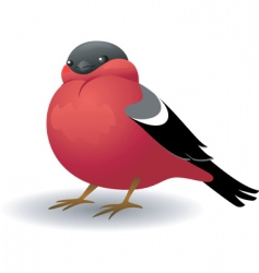 cartoon bird vector image