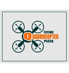 Drone quadrocopter icon quadrocopter flying pizza vector