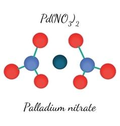 Palladium nitrate PdN2O6 molecule vector image vector image