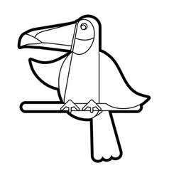 exotic natural bird vector image
