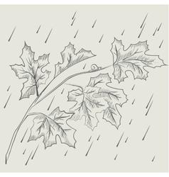 Maple tree branch in the rain vector