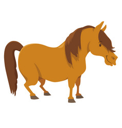 Pony farm animal character vector