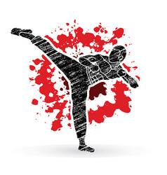 Kung fu karate kick designed on splatter blood vector