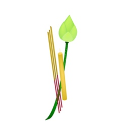 Fresh lotus with joss sticks and candle vector