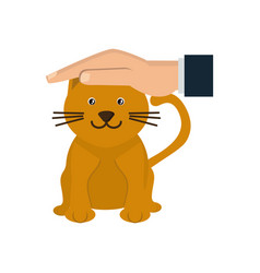 Hand pet cat protection health care animal vector