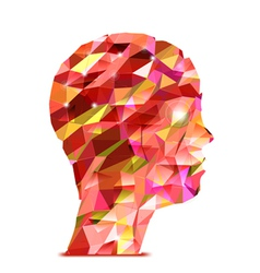 Human head Abstract of triangles vector image