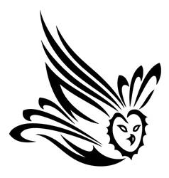 Owl fly vector
