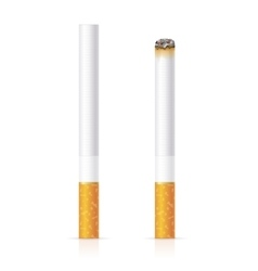 Realistic cigarette with traditional filter vector