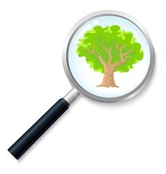 Treesearch vector
