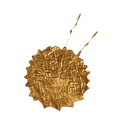Golden splash vector