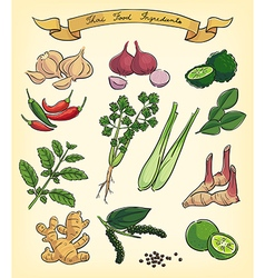 hand drawn thai food ingredients vector image vector image