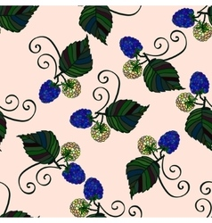 Seamless pattern with hand drawn blackberries vector image vector image