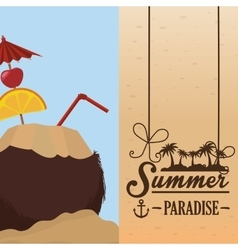 Poster summer paradise beach coconut cocktail vector