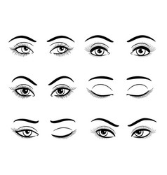 open and closed female eyes set vector image vector image
