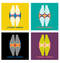 set of knee joint health care icon flat vector image
