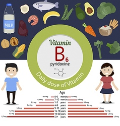 Vitamin b6 or pyridoxine infographic vector
